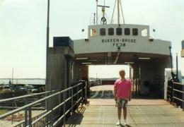 Bukken Bruse ved Kragenæs 1990
