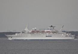 Delphin 12. juni 2013